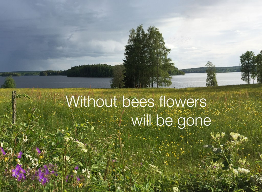 without-bees
